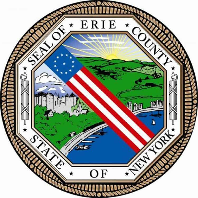 Image result for county of erie logo