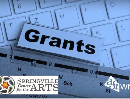 2019 DEC Grant Information Session (Springville)